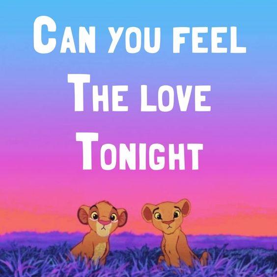 经典歌曲 Can You Feel The Love Tonight 今夜爱无限 中英对照歌词