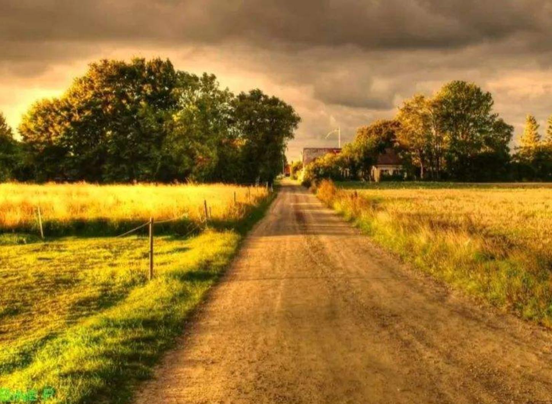 经典歌曲《Take Me Home, Country Road》乡村路带我回家 中英文对照歌词