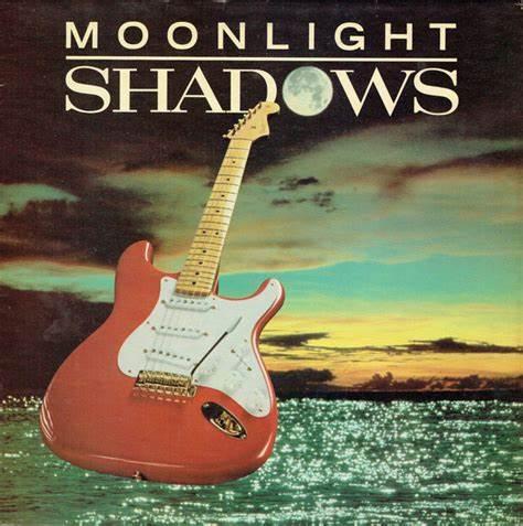 经典歌曲《Moonlight Shadow》《月之光影》中英文对照歌词
