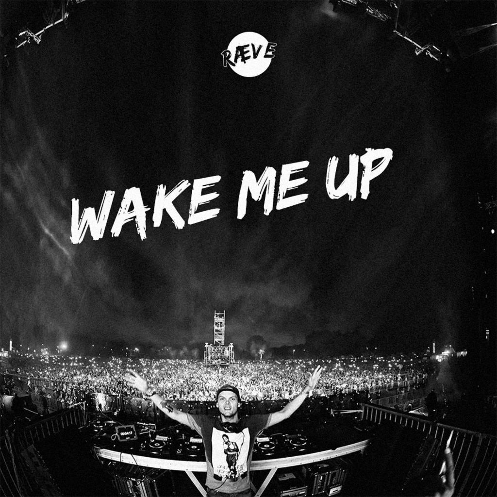 经典歌曲《Wake Me Up》《把我叫醒》中英文对照歌词