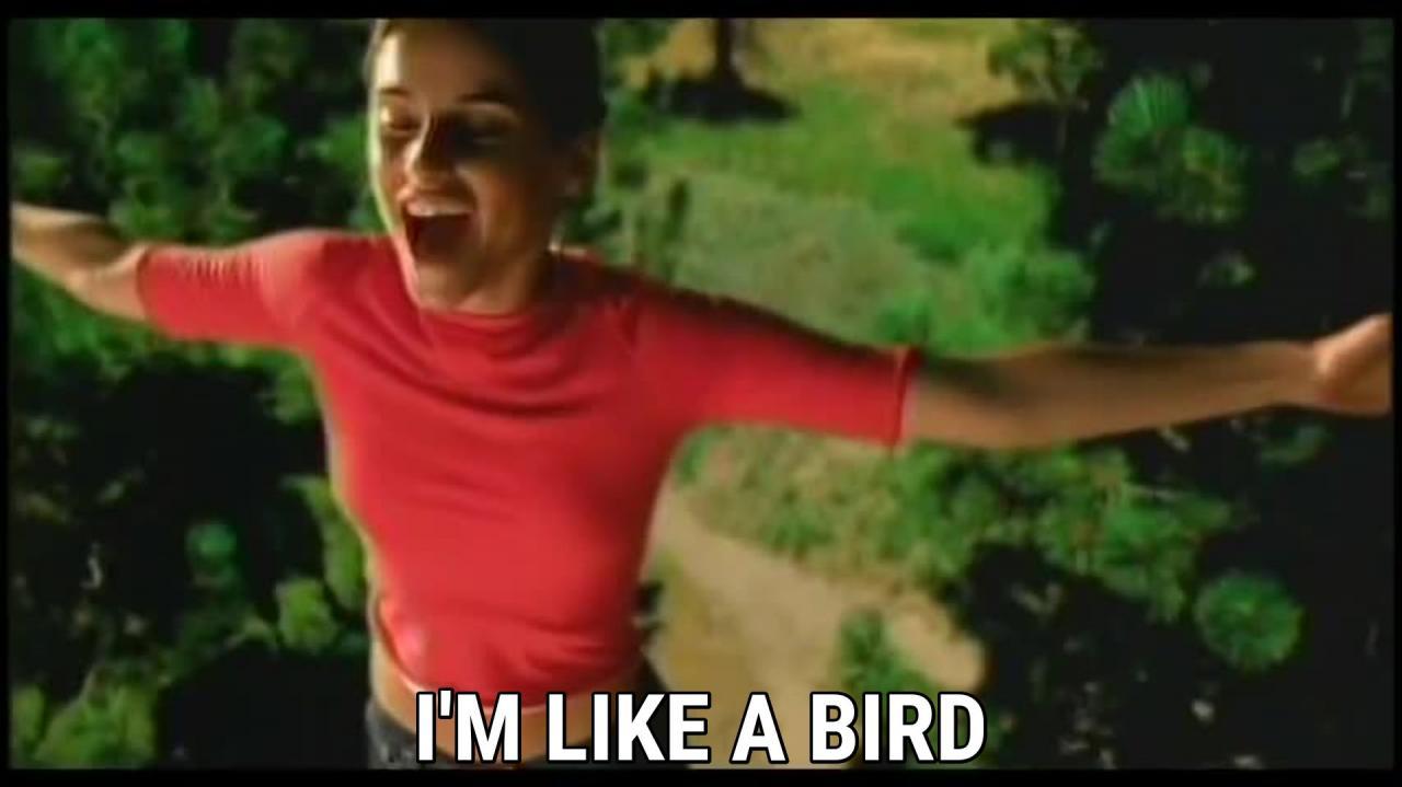 经典歌曲《Like A Bird》中英文对照歌词