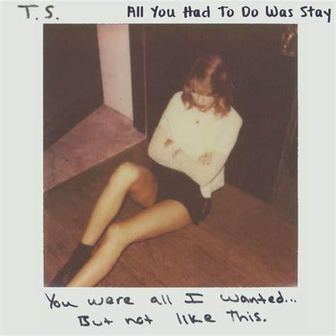 经典歌曲《All You Had to Do Was Stay》《只要你留下》中英文对照歌词